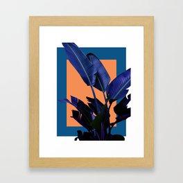 Moonlight Rhythms Framed Art Print