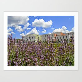 Colors of Ozyegin - Purple Art Print
