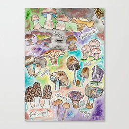 Wild Mushrooms Canvas Print