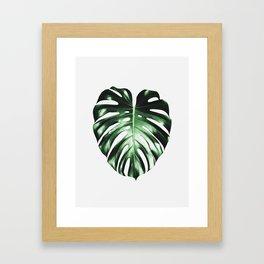 Plant, Leaf, Monstera, Nature, Modern art, Art, Minimal, Wall art Framed Art Print