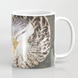 Duck 2 Coffee Mug