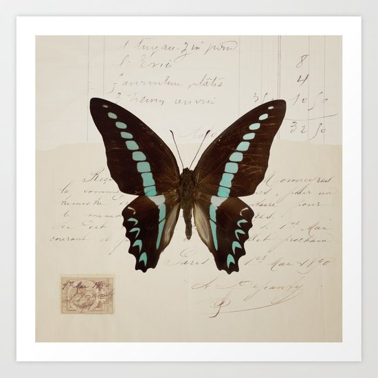 blue spotted butterfly Art Print