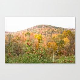 Autumn Upstate Canvas Print