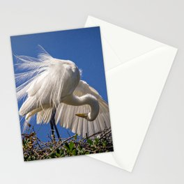 Great Egret Feathers Stationery Cards