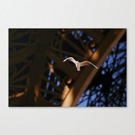 Jonathan in Paris Canvas Print