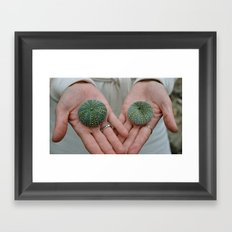 Sea Urchins in Hands Framed Art Print