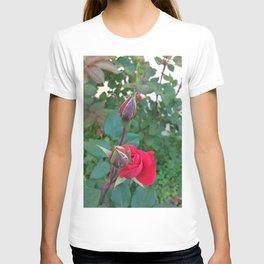 Blooming Among Buds T-shirt