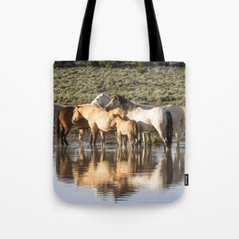 Reflection of a Mustang Family Tote Bag
