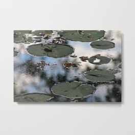 Lily Pads at the Arboretum Metal Print