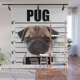 good pugs gone bad Wall Mural