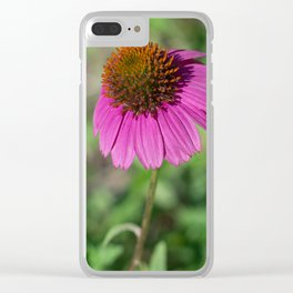 Twins Clear iPhone Case