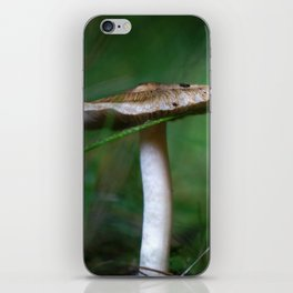 Brown Capped Mushroom with a Wet Blade of Grass iPhone Skin