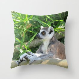 Cute and relaxed Ring-tailed lemur (lemur catta) Throw Pillow