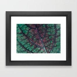 Never Leaf Me pt II Framed Art Print