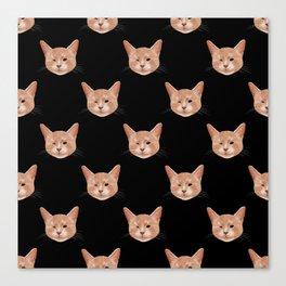 Kiki, the pretty blind cat Canvas Print