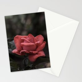 A Red Beauty Stationery Cards
