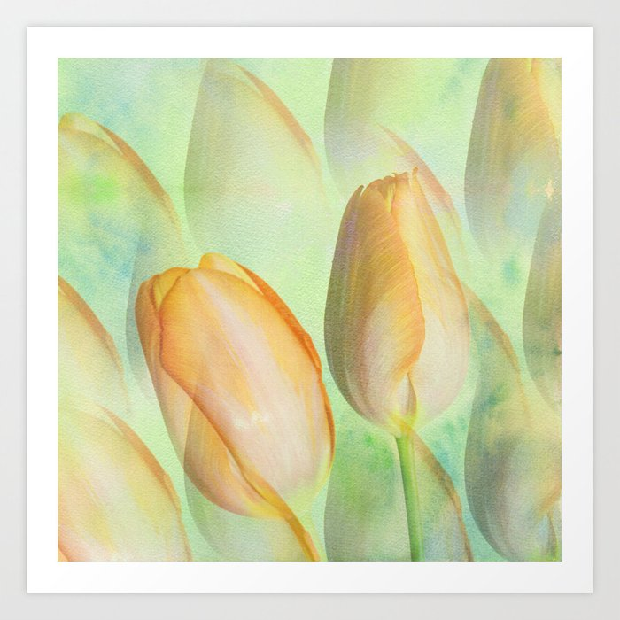 Water colour Spring Tulips Art Print
