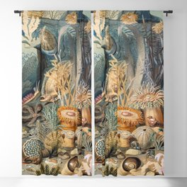 Ocean Life by James M Sommerville 1859 - Reproduction from original under CC0 Blackout Curtain