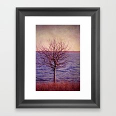 winter sun Framed Art Print