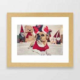 Josie the Red-horn Frengle... Framed Art Print