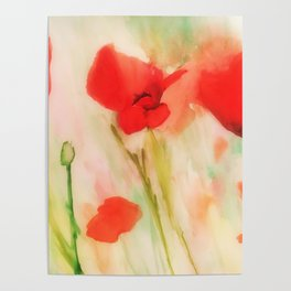 Poppies in a field Poster