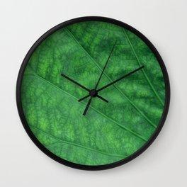 Green Leaf Closeup Texture Wall Clock