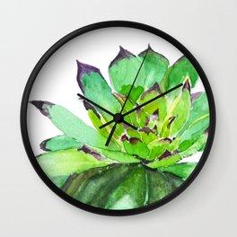 green succulent 2 Wall Clock
