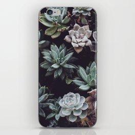 succulent plant iPhone Skin
