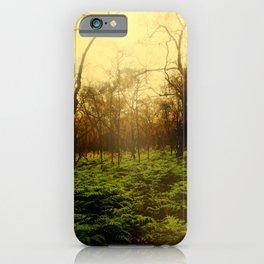 Lambent Woods iPhone Case