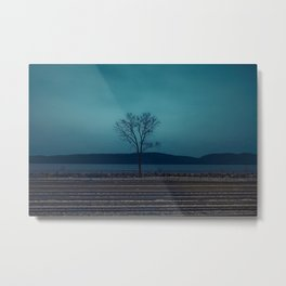 """TO COLD SPRING"" Metal Print"