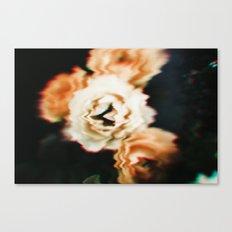 VHS flowers. Canvas Print