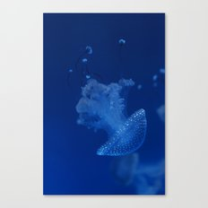 Avatar Canvas Print