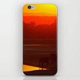 Elephants evening - Africa wildlife iPhone Skin
