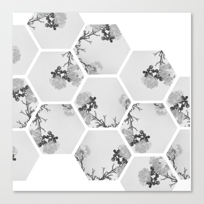 Hexagon Flowers. Canvas Print