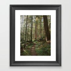 Wonderland Forest Trail Framed Art Print
