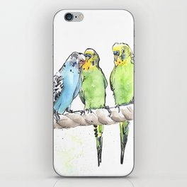 A Row of Budgerigars! iPhone Skin