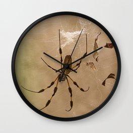 Florida banana Spider Wall Clock