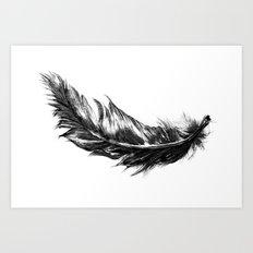 Feather- B&W // Illustration Art Print