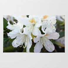 Beautiful white azalea flower photography. Rug