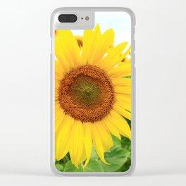 Sonnenblumen 3 Clear iPhone Case