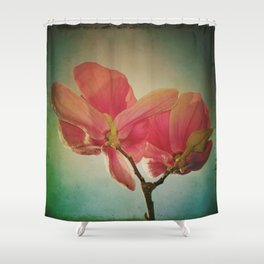 Vintage Spring Flowers Shower Curtain