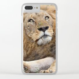 African Dreams Clear iPhone Case