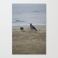 the good feathers Canvas Print
