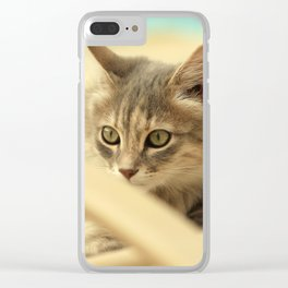 pussy at vacation Clear iPhone Case