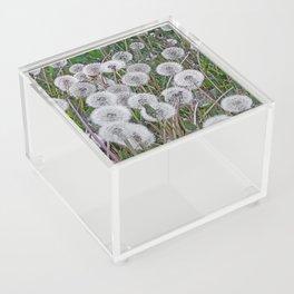 SEEDS OF DANDELION Acrylic Box