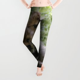 Cheetah20150906 Leggings