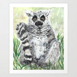 Ring-Tailed Lemur - cute animal, nature, lemur, eyeroll, zero given, not impressed, animals Art Print