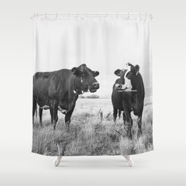 Cattle Photograph in Black and White Shower Curtain