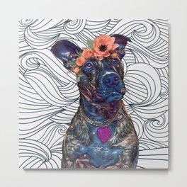 Lola The Pit Bull Metal Print