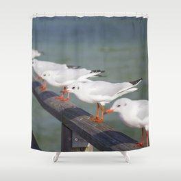 Seagulls II Shower Curtain
